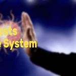cbd boost immune system